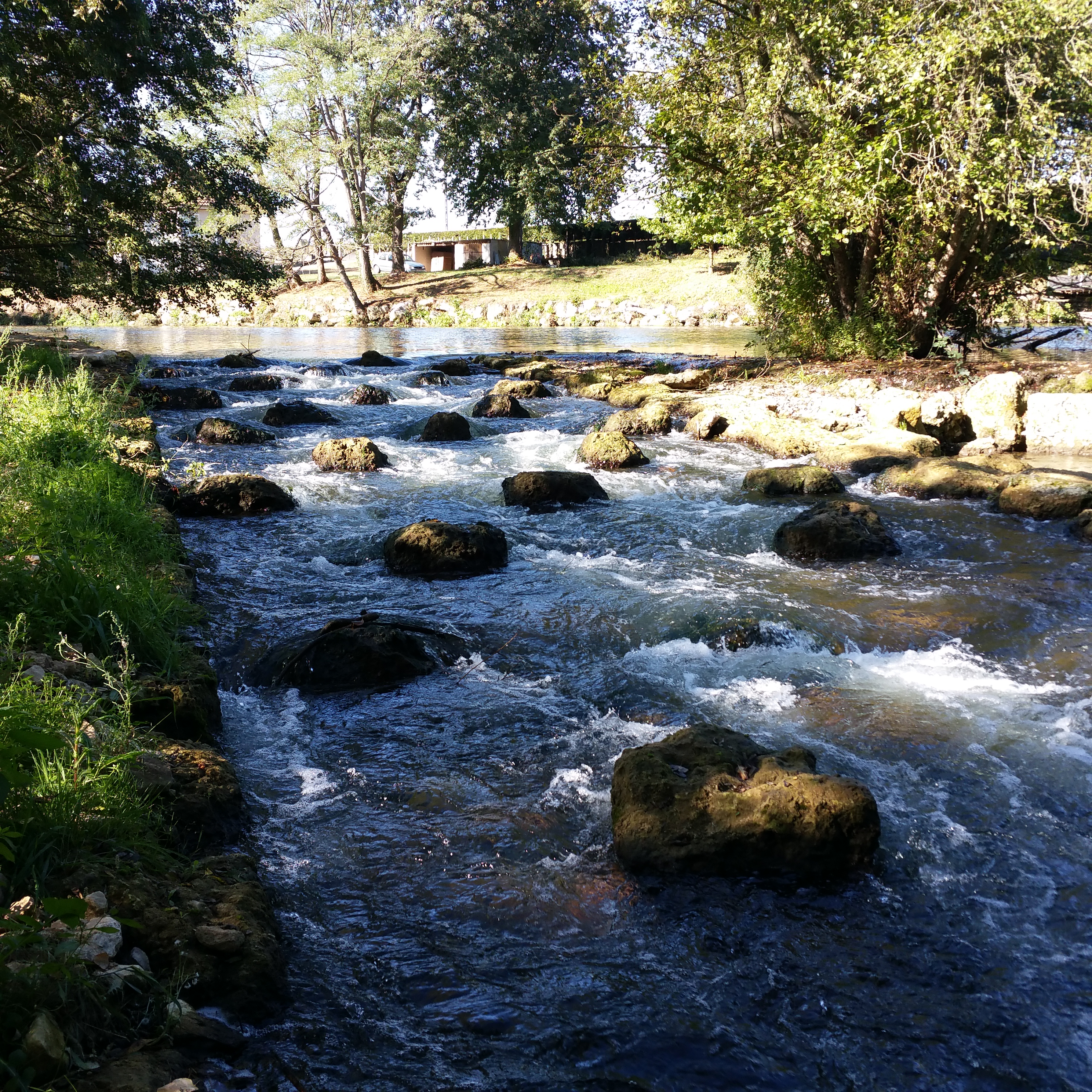 La rivière du Clain