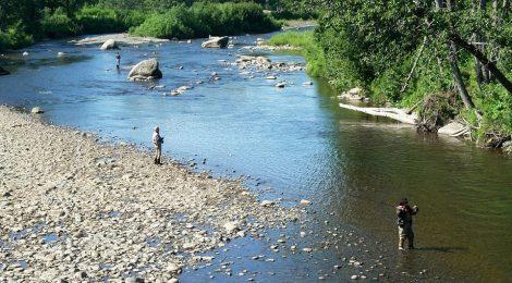 pêcheur au bord du Clain