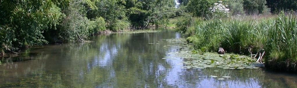 la rivière du Clain en amont de Poitiers