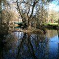 L'auxance, rivière affluent du Clain - département de la Vienne