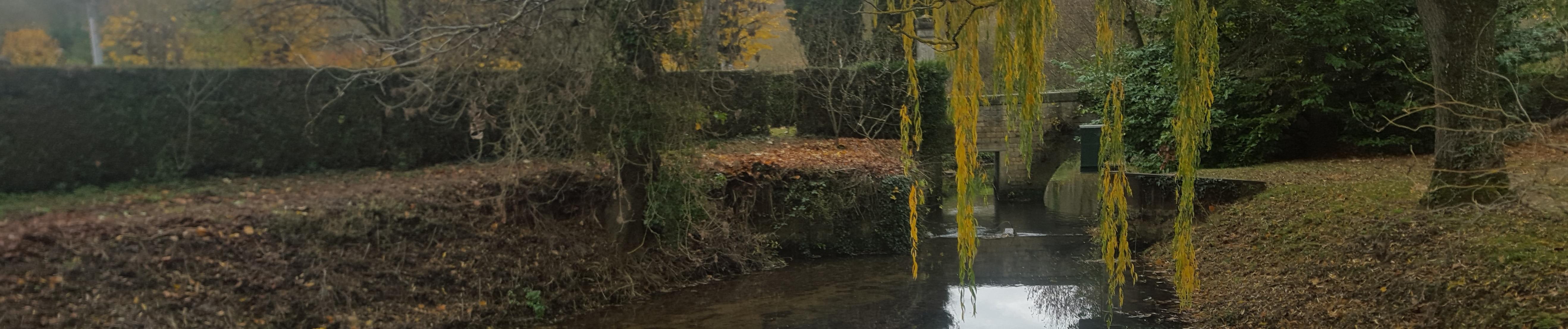 Le cours d'eau du Miosson à Saint-Benoit